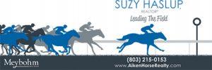 Suzy Haslup, realtor logo